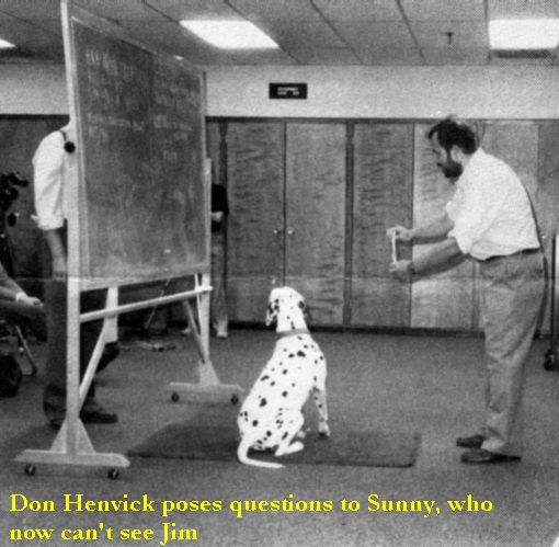 Don Henvick poses questions to Sunny, who now can't see Jim.